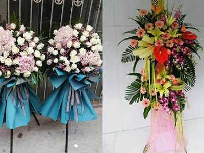 这两种鲜花与水果相配 情人节送水果的图片