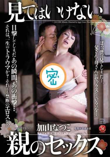 加山夏子所有作品下载地址 加山夏子番号juc-559封面